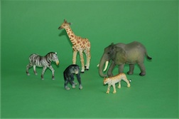 BOXED ANIMALS OF AFRICA COLLECTION