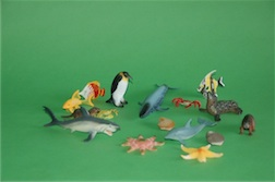 BOXED AQUATIC ANIMAL COLLECTION